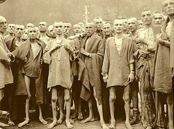 Indefensión aprendida en Auschwitz